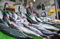 BAYRAM YıLMAZ - Balığın Bol Olması Hem Balıkçıları Hem De Vatandaşların Yüzünü Güldürüyor