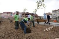 CENNET - Çorum Belediyesi 13 Bin Ağacı Toprakla Buluşturdu
