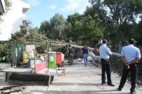 BENZIN - İş Makinesinin Köklediği Ağaç Benzin İstasyonuna Devrildi