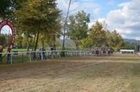 TÜRKIYE JOKEY KULÜBÜ - Sapanca Mahalli At Yarışları Büyük İlgi Gördü