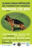 1 EKİM - Alman Çoban Köpekleri Sokak Hayvanları İçin Yarışacak