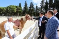 İZZETTIN KÜÇÜK - Bursa Valisi İzzettin Küçük İlçe Ziyaretlerine Devam Ediyor