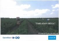 SOSYAL SORUMLULUK - Carrefoursa'dan UNICEF'in 'Tarladan Okula' Projesine Destek