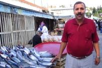 HÜSEYİN ALTINTAŞ - Edremitli Balıkçının Gram İsyanı