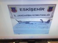 İL JANDARMA KOMUTANLIĞI - Eskişehir'de Tarihi Eser Kaçakçılığı