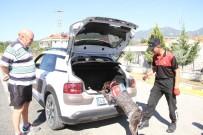 İL JANDARMA KOMUTANLIĞI - Fethiye'de Huzurlu Denetimleri Güveni Sağlıyor