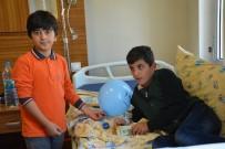 AHMET ÖZCAN - Van'da 'Dünya Okul Sütü Günü' Etkinliği