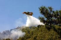 ORMAN YANGINI - Aydın Ve Muğla'da 300 Orman Yangını Çıktı