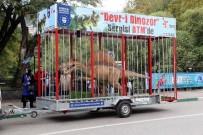 HATIRA FOTOĞRAFI - Bursa'yı Dinozorlar Bastı