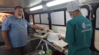 SOKAK HAYVANI - Tosya'da Sokak Köpekleri Kısırlaştırma Operasyonu