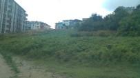 CEVHER DUDAYEV - Körfez'de Boş Araziler Temizleniyor