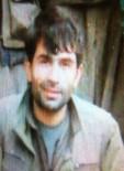 Ordu'da Öldürülen Teröristlerin Arasında Grup Lideri De Bulunuyor