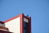 HAVA YASTIĞI - Ortaca'da Devlet Hastanesi İnşaatında İntihar Girişimi