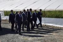 KALİFİYE ELEMAN - Vali Taşyapan'dan Güneş Enerjili Seralarda İnceleme