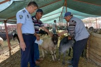 HÜSAMETTIN ÇETINKAYA - Kumluca'da Kurbanlık Satış Noktaları Belirlendi