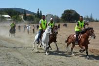 AT YARIŞLARI - Rahvan Atlar Orhaneli'nde Yarıştı