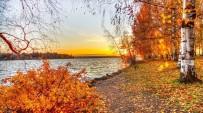 MEHMET YAVUZ - Sararan Yapraklar Sonbahar Depresyonunun Habercisi