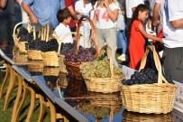 BAĞ BOZUMU - Süleymanpaşa'da En Güzel Üzüm Yarışması Düzenlendi