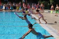 Yüzme Kursunda Sertifika Heyecanı