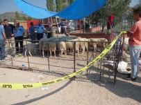 MEHMET DEMIR - Kurban Pazarında Yer Kavgası Açıklaması 3 Yaralı