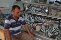 BARBUNYA - Gelibolu'da Balık Fiyatları Düştü