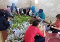 TOPLUM MERKEZİ - Midyat'ta 30 Kadına Çalışma İmkanı