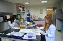 BİLİM ADAMI - Uludağ Üniversitesi, depresyonu yenen molekül buldu