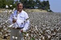 HAZIR GİYİM - Çiftçiler Pamukta Daha Fazla Destek İstiyor