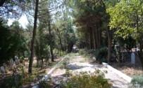 MEHMED ALI SARAOĞLU - Gediz Şehir Mezarlığı'nda Bayram Temizliği