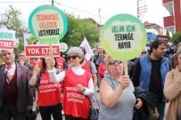 EKOLOJIK - Cicibaşoğlu, Türkiye Tabiatını Koruma Derneği Zonguldak Temsilcisi Oldu