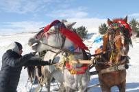 AYNALı SAZAN - Çıldır Gölü'nde Atlı Kızak Keyfi Ve Balık Avı