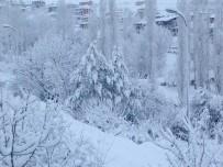 KAR TOPU - Adana'nın Kuzey İlçesi Kar Esaretinde