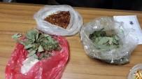 Biokaçakçılık Yapan Bir Rus Yakalandı