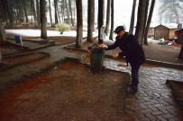 ORMANA - Niksar'da Aç Kalan Hayvanlar İçin Doğaya Yiyecek Bırakıldı
