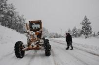 KUŞ CENNETİ - Adana'nın 7 İlçesinde Karla Mücadele