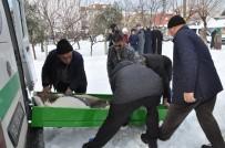 GÜNDOĞAN - Iraklı Aile Zehirlendi Açıklaması 2 Ölü