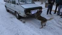 YAKIT DEPOSU - Uşak'ta 19 Kilo 540 Gram Esrar Yakalandı