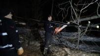 ULUDAĞ - Bursa'da Lodos Ağaçları Söktü, Çatıları Uçurdu