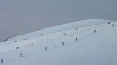 PKK operasyonu başladı