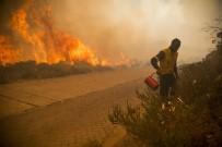FELAKET - Güney Afrika'da Ümit Burnu'ndaki Yangın Söndürülemiyor