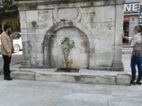 İSTANBUL AYDIN ÜNİVERSİTESİ - İAÜ Öğrencileri Tarihi Çeşmeyi Yıkılmaktan Kurtardı
