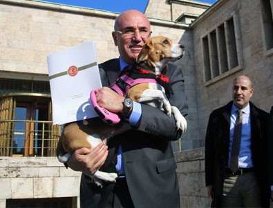 CHP'li vekil Meclis'e köpeğiyle geldi