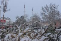 Elazığ'da Kar Yağışı