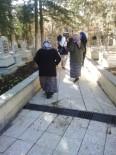 SOSYAL SORUMLULUK PROJESİ - Kilis'te Ninelere Türbeler Gezdirildi