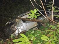 DÜZCE ÜNİVERSİTESİ - Otomobil 30 Metrelik Uçuruma Yuvarlandı Açıklaması 3 Yaralı