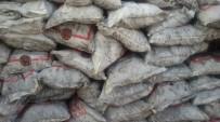 Patnos'ta 15 Bin Ton Kömür Dağıtılacak