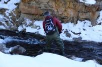 OKSIJEN - Rize Alabalığı Markalandıktan 200 Gün Sonra Kendini Gösterdi