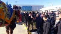 Yargıtay Başkanı Havalimanında Güreş Develeri İle Karşılandı