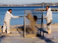 BEACH - Çeşme'de Yakıt Kirliliği Tepkisi