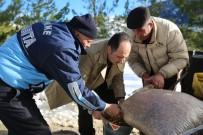 Finike Belediye Başkanı  Kış Şartlarında Yiyecek Bulmakta Zorlanan Vahşi Hayvanların Geçiş Güzergahlarına Yem Bıraktı.
